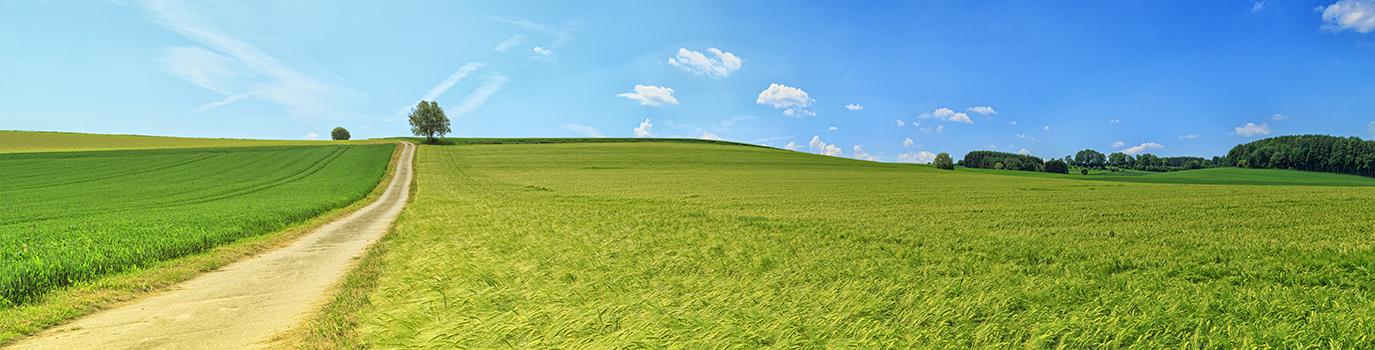 greenbelt